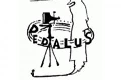 Archivio Dedalus