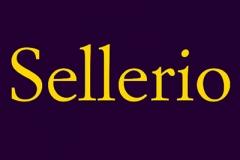 Sellerio Editrice