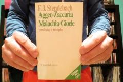 Aggeo-Zaccaria, Malachia-Gioele, profezia e tempio