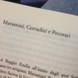 Marastoni, Corradini, Pecorari, Casa Mazzolini