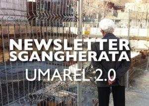 Newsletter Sgangherata, Casa Mazzolini, Modena, Node Festival, Emilio Corradini, Gilberto Mazzoli, Riccardo Morselli